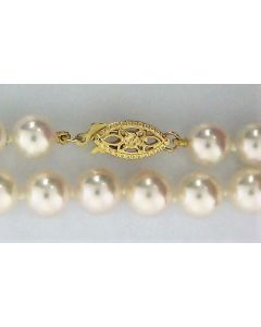 Pearl Round Necklace in 14k Yellow Gold -187867